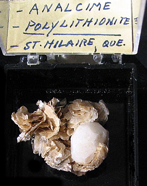 Analcime on Polylithionite, Mont Saint-Hilaire, Québec, Canada ex Ron Waddell
