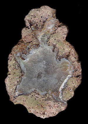 Thunderegg with Agate and Quartz in Rhyolite, Mexico