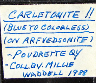 Carletonite on Arfvedsonite, Mont Saint-Hilaire, Québec, Canada ex Ron Waddell