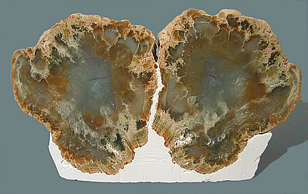 Agate nodule, locality unknown